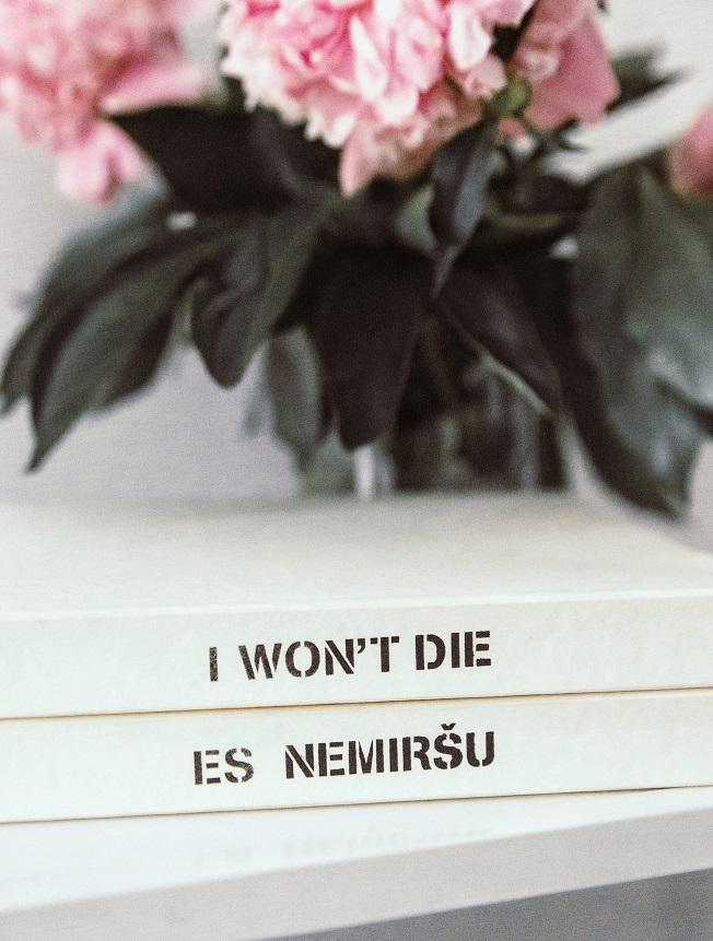 Es nemirsu