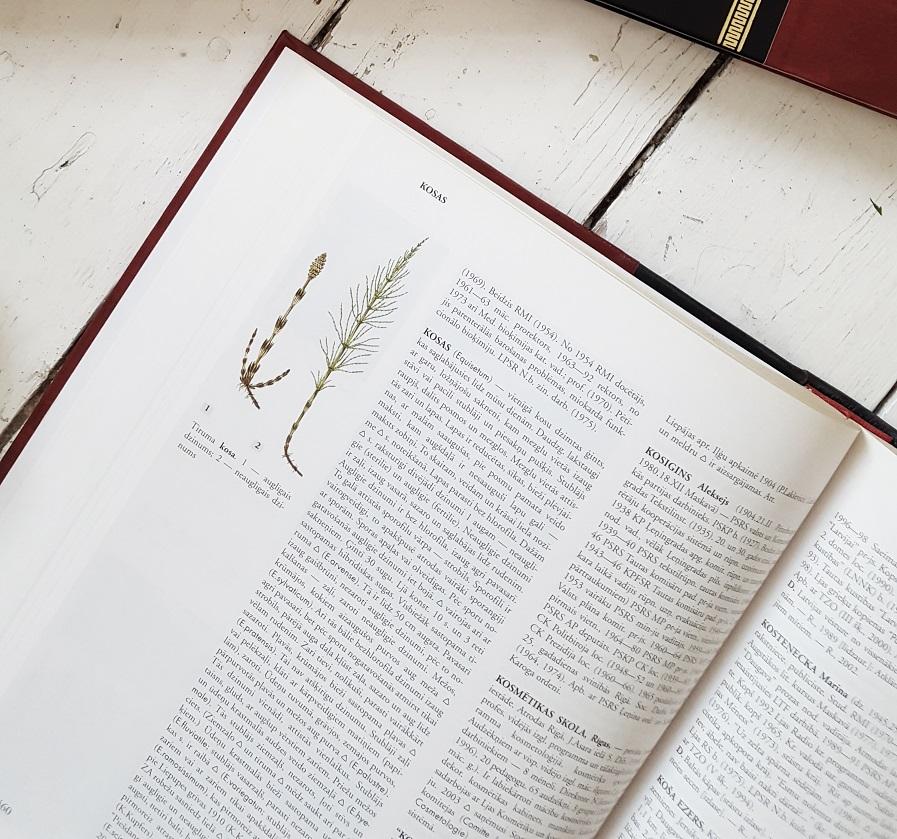 Latvijas enciklopedija